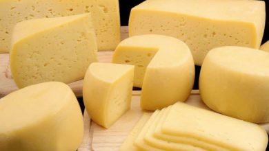 Photo of В Роспотребнадзоре рассказали, как определить качество сыра
