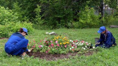 Photo of Что нужно сделать подросткам, оформляющимся на летнее трудоустройство