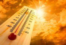 Photo of В регионе ожидается сильная жара: воздух прогреется до 37 градусов