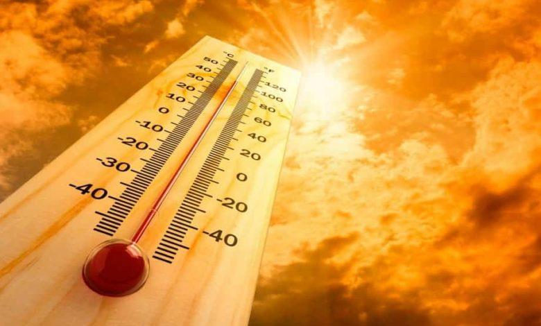 жара,сильная жара,
