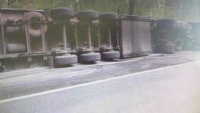 Photo of На трассе перевернулась фура со свиньями