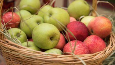 Photo of 19 августа — Яблочный Спас: что можно и что нельзя делать в этот народный праздник