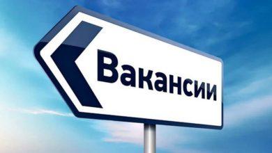 Photo of В августе названы вакансии с зарплатой более 300 тысяч рублей
