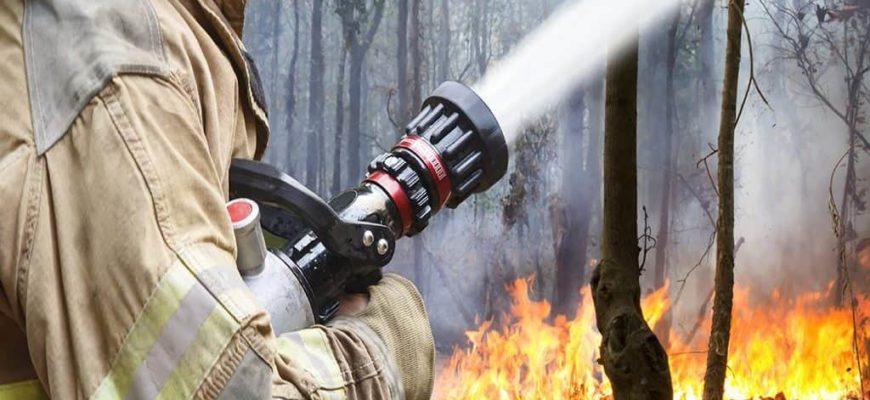 лесной пожар,пожароопасный сезон,