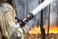 Photo of Во Владимирской области отменили пожароопасный сезон