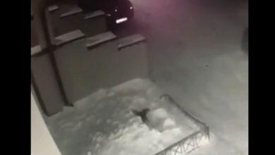 Photo of Видео: 6-летняя девочка упала из окна 4 этажа, встала и пошла домой