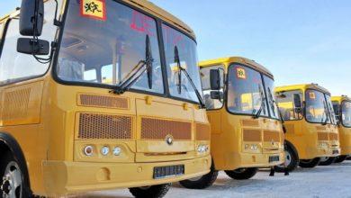 Photo of Регион получил 31 новый школьный автобус