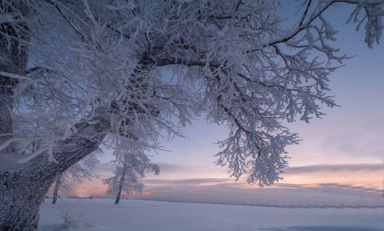 зима,настоящая зима,зимние морозы,