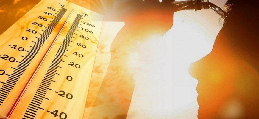 аномальная жара,аномальное лето,