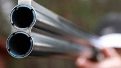 Photo of Задержали браконьера, совершившего незаконный отстрел лося