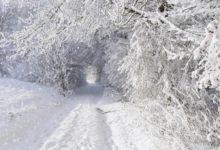 Photo of 21 января Емельян зимний. Что нельзя делать в этот день?