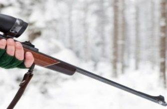карабин, охотник, браконьер,