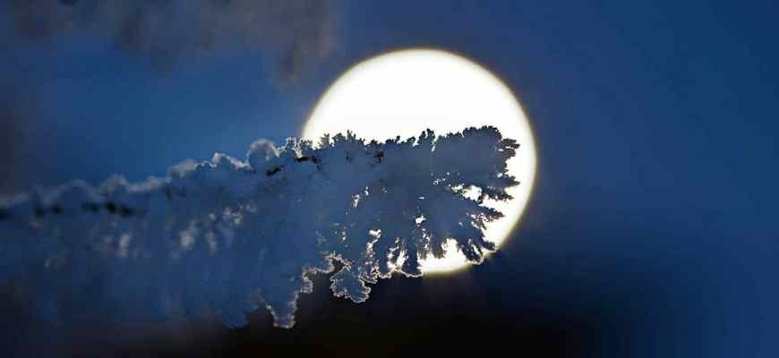 снежное полнолуние, зима луна, зимнее полнолуние, луна в снегу,